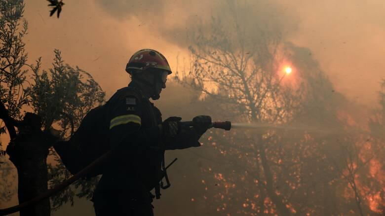 Φωτιά στη Σητεία - Μεγάλη κινητοποίηση της Πυροσβεστικής
