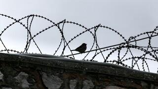 Έρευνα στις φυλακές Κέρκυρας: Τι εντοπίστηκε στα κελιά των κρατουμένων