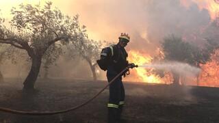 Πολύ υψηλός ο κίνδυνος πυρκαγιάς την Τετάρτη σε επτά περιφέρειες (χάρτης)