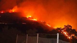 Φωτιά στη Μυτιλήνη: Τριπλό μέτωπο της πυρκαγιάς σε Βατούσα, Άντισσα και Μόρια