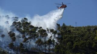 Συναγερμός στην Πυροσβεστική: Διπλό πύρινο μέτωπο σε Νέα Μάκρη και Καλύβια