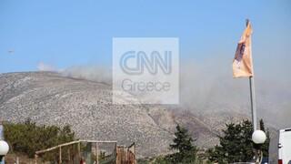Φωτιά στα Καλύβια: «Κάηκαν σπίτια», εκκενώνονται οικισμοί