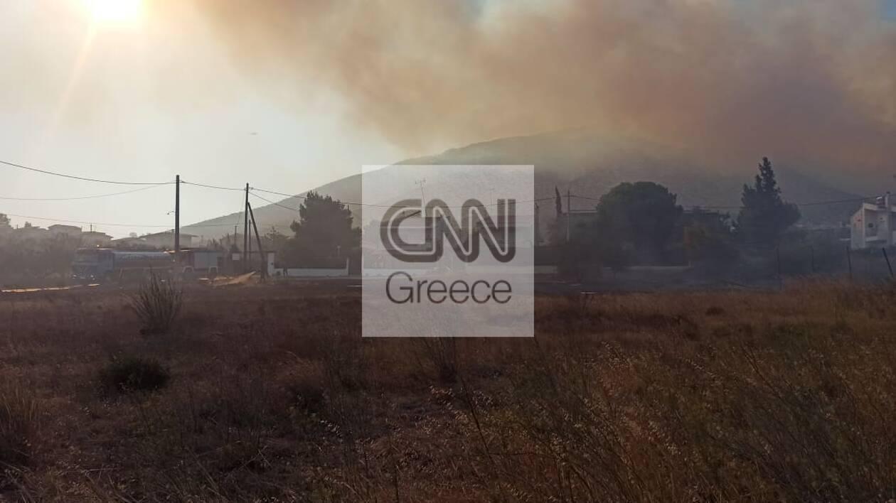 https://cdn.cnngreece.gr/media/news/2020/09/09/233832/photos/snapshot/5f58e863837ad.jpg