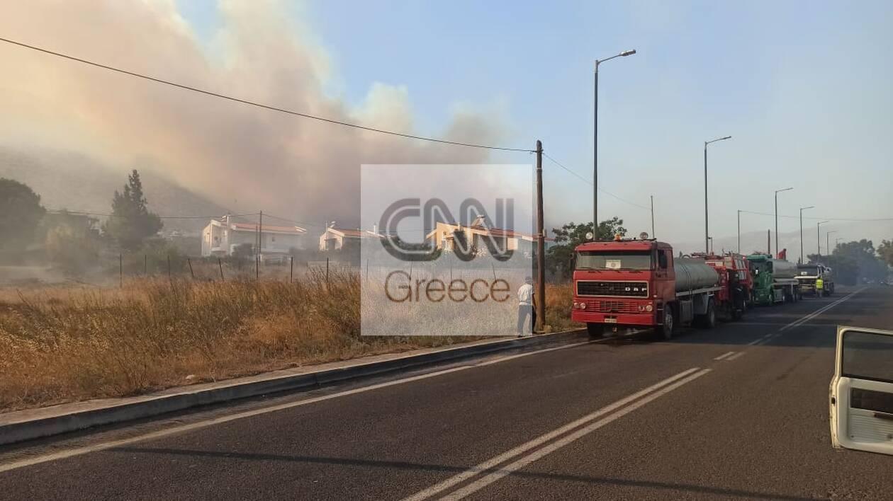 https://cdn.cnngreece.gr/media/news/2020/09/09/233832/photos/snapshot/5f58e8644d084.jpg
