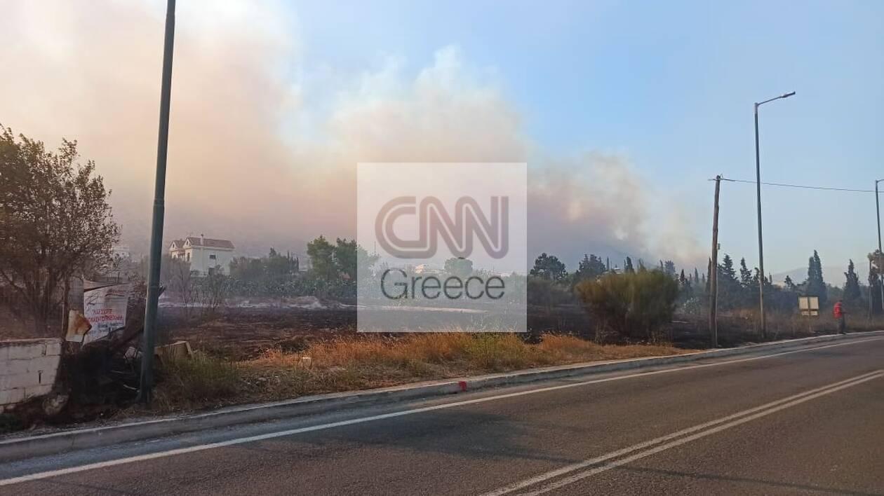https://cdn.cnngreece.gr/media/news/2020/09/09/233832/photos/snapshot/5f58e8650c851.jpg