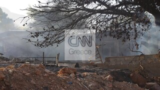 Πατούλης στο CNN Greece: Κρίσιμες οι επόμενες ώρες για την εξέλιξη της φωτιάς στην Ανάβυσσο