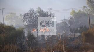 Ελεγχόμενη η φωτιά στην Ανάβυσσο - Εκκενώθηκαν οικισμοί και κάηκαν σπίτια