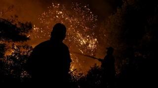 Φωτιά στην Ηλεία: Μαίνονται οι φλόγες - Εκκενώθηκε οικισμός
