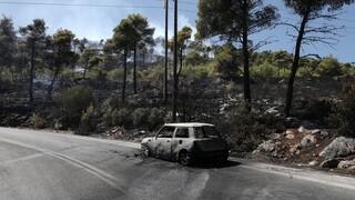 Ξεκινούν οι αιτήσεις των πληγέντων από την πυρκαγιά στους Δήμους Σαρωνικού και Λαυρεωτικής