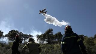 Σε ποιες περιοχές είναι υψηλός ο κίνδυνος πυρκαγιάς την Παρασκευή
