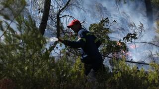 Υψηλός ο κίνδυνος πυρκαγιάς για τρεις περιφέρειες