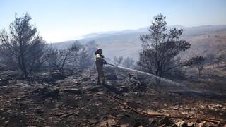 Πού είναι υψηλός ο κίνδυνος πυρκαγιάς σήμερα, Σάββατο