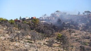 Σε ύφεση οι φωτιές σε Κορινθία και Δυτική Αχαΐα