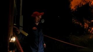 Σε ύφεση η φωτιά έξω από το ΚΥΤ της Σάμου - Έξι προσαγωγές