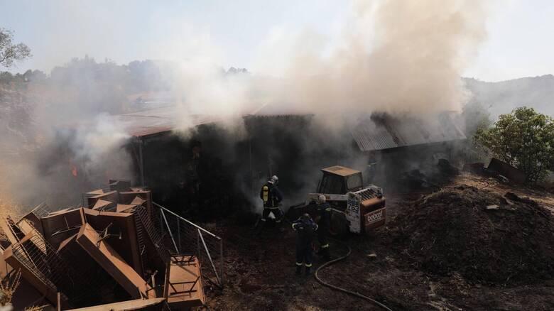 Νέα μεγάλη φωτιά σε αποθήκη στη Μόρια
