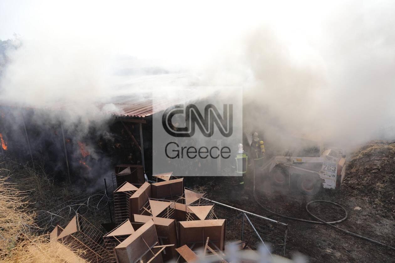 https://cdn.cnngreece.gr/media/news/2020/09/16/234636/photos/snapshot/moria_apothiki_fotia-1.jpg