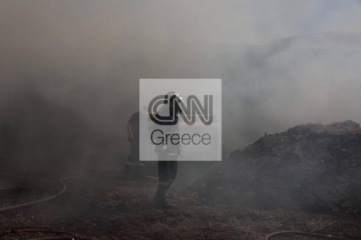 https://cdn.cnngreece.gr/media/news/2020/09/16/234636/photos/snapshot/moria_apothiki_fotia-2.jpg