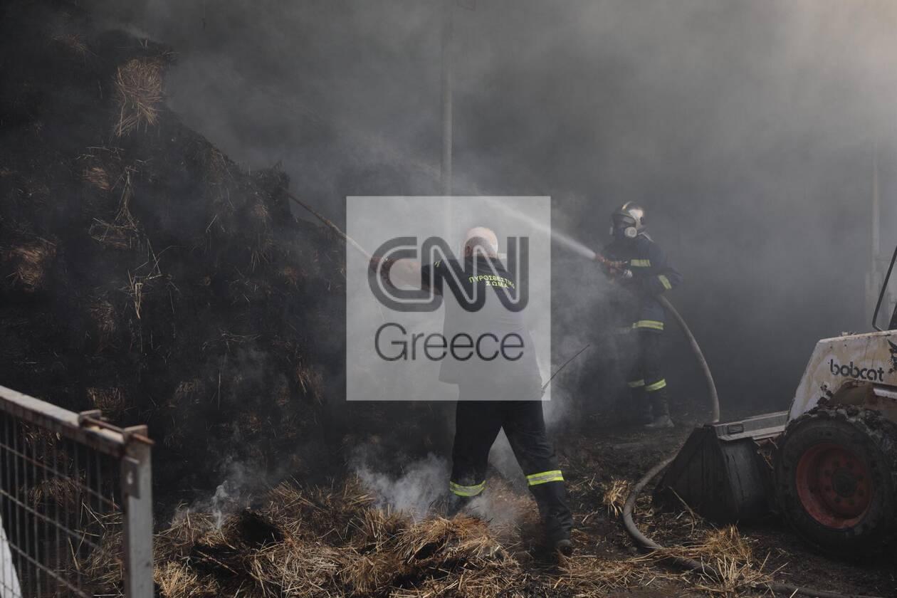 https://cdn.cnngreece.gr/media/news/2020/09/16/234636/photos/snapshot/moria_apothiki_fotia-3.jpg