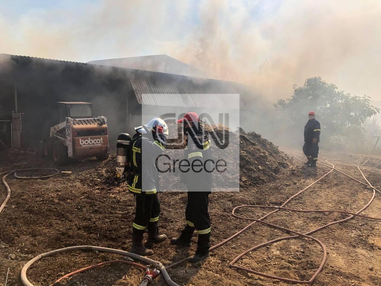 https://cdn.cnngreece.gr/media/news/2020/09/16/234636/photos/snapshot/moria_apothiki_fotia-4.jpg