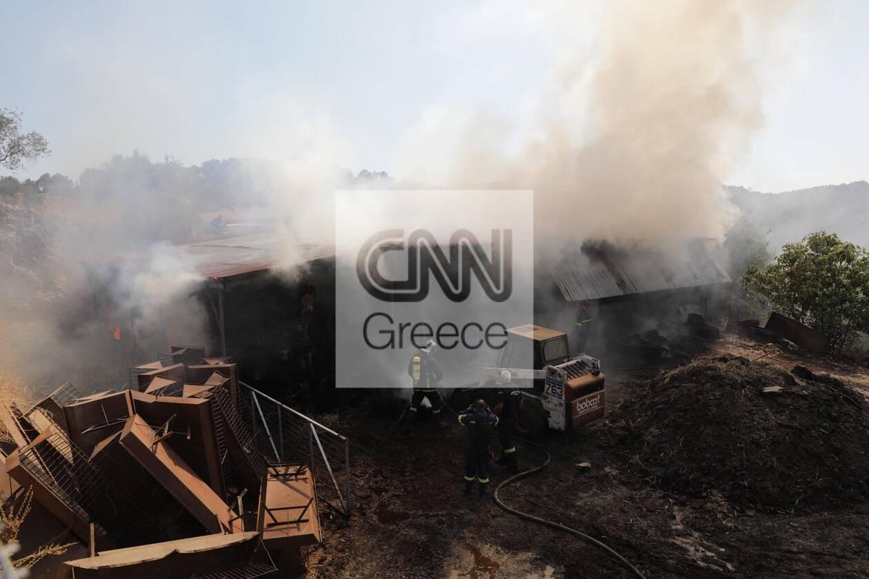 https://cdn.cnngreece.gr/media/news/2020/09/16/234636/photos/snapshot/moria_apothiki_fotia-7.jpg