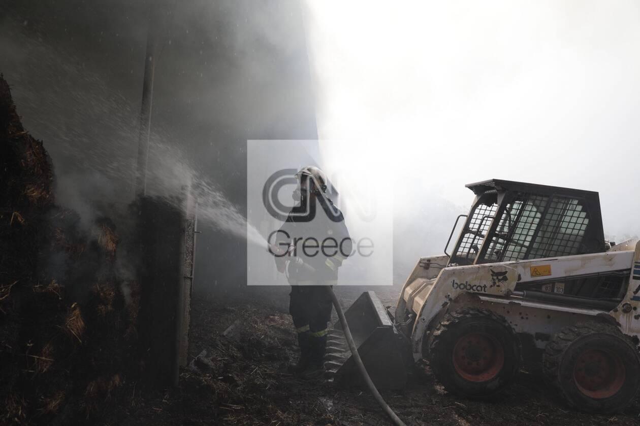 https://cdn.cnngreece.gr/media/news/2020/09/16/234636/photos/snapshot/moria_apothiki_fotia-8.jpg