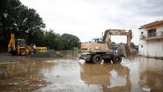 Κακοκαιρία «Ιανός»: Συναγερμός στη Φθιώτιδα για εγκλωβισμένους σε σπίτια και αυτοκίνητα