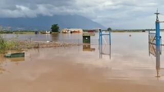 Κακοκαιρία «Ιανός»: Σοβαρές πλημμύρες και στην Ερέτρια