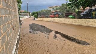Κακοκαιρία «Ιανός»: Σε κατάσταση έκτακτης ανάγκης ο δήμος Μακρακώμης Φθιώτιδας