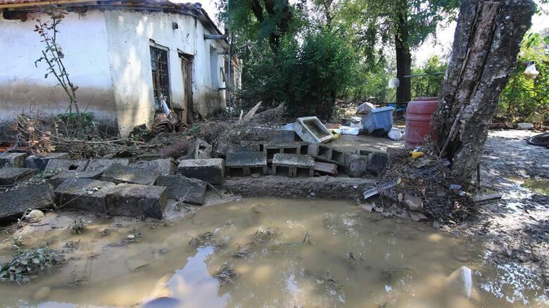 Κακοκαιρία «Ιανός»: Εκτεταμένες καταστροφές στη Λαμία