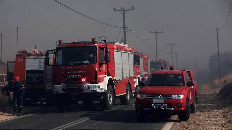 Τραγωδία στον Βόλο: Νεκρός πυροσβέστης εν ώρα καθήκοντος