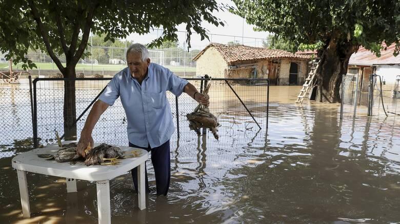 Καρδίτσα: Ο «Ιανός» έφυγε, τα προβλήματα παραμένουν - Αγώνας δρόμου ενόψει του χειμώνα
