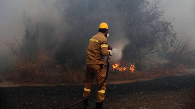 Φωτιά στo Βρωμοπούσι Λαυρεωτικής