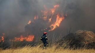 Υπό μερικό έλεγχο η φωτιά στo Βρωμοπούσι Λαυρεωτικής