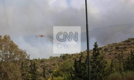 Φωτιά στο Βύρωνα: Οι πρώτες εικόνες από το σημείο