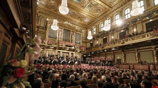 Βιέννη: Με περιορισμένο κοινό θα πραγματοποιηθεί η Πρωτοχρονιάτικη συναυλία
