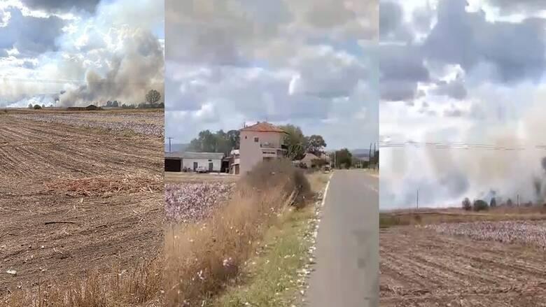 Νέα φωτιά στον Έβρο - Κοντά σε χωριό οι φλόγες