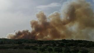 Ανεξέλεγκτη η φωτιά στις Βολίμες Ζακύνθου