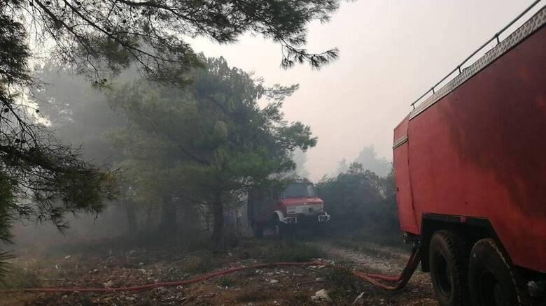 Συνεχίζεται η «μάχη» με τις φλόγες στις Βολίμες Ζακύνθου