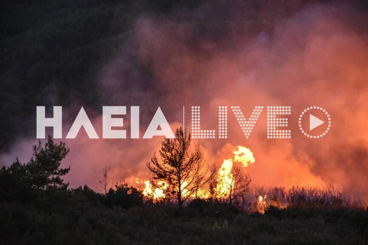 https://cdn.cnngreece.gr/media/news/2020/10/04/237099/photos/snapshot/fotia_triantafyllia-7.jpg