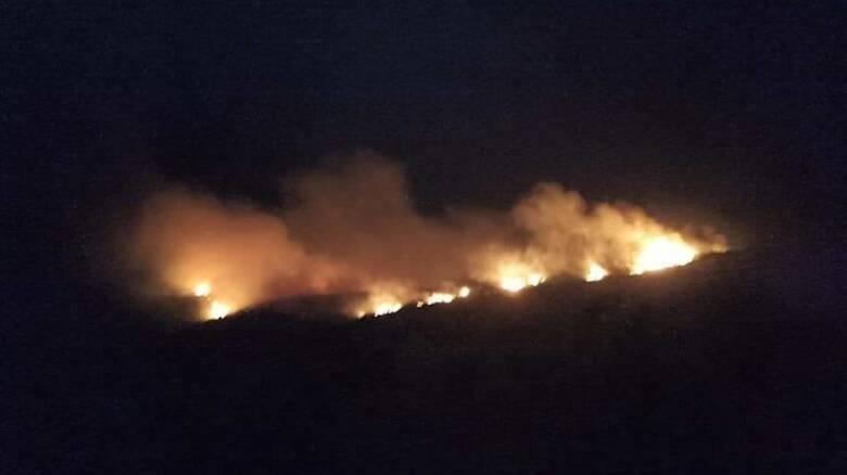 Μαίνεται η φωτιά στη Ζάκυνθο - Έχει κάψει 1.500 στρέμματα