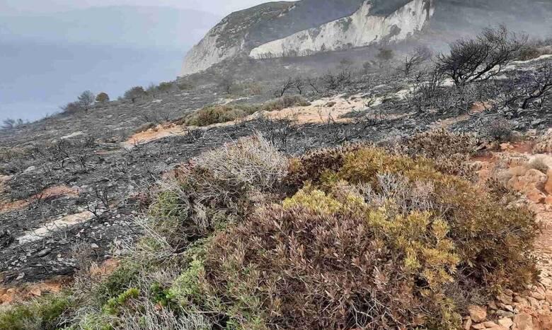 Φωτιά Ζάκυνθος: Κρανίου τόπος η περιοχή πάνω από το «Ναυάγιο» - Συγκλονιστικό βίντεο