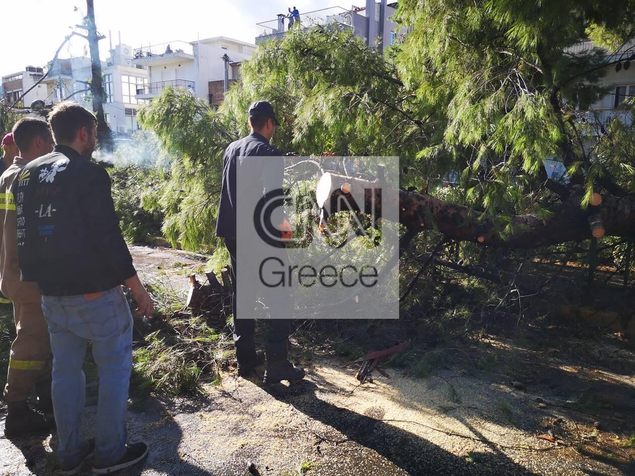 https://cdn.cnngreece.gr/media/news/2020/10/13/238182/photos/snapshot/121618386_335822897492914_5294282274757684906_n.jpg