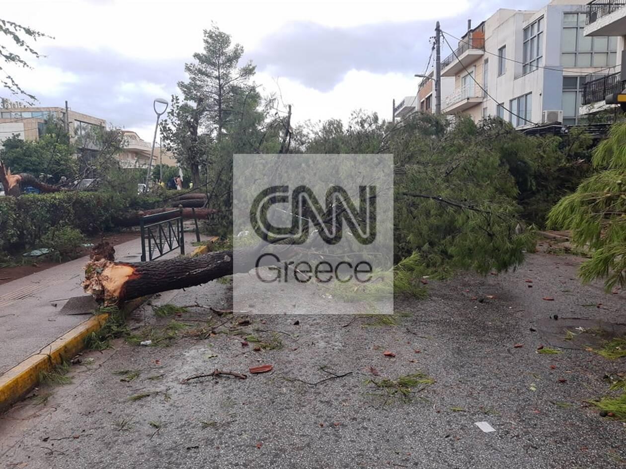 https://cdn.cnngreece.gr/media/news/2020/10/13/238189/photos/snapshot/121256533_1021601494937331_8437235922953505255_n.jpg