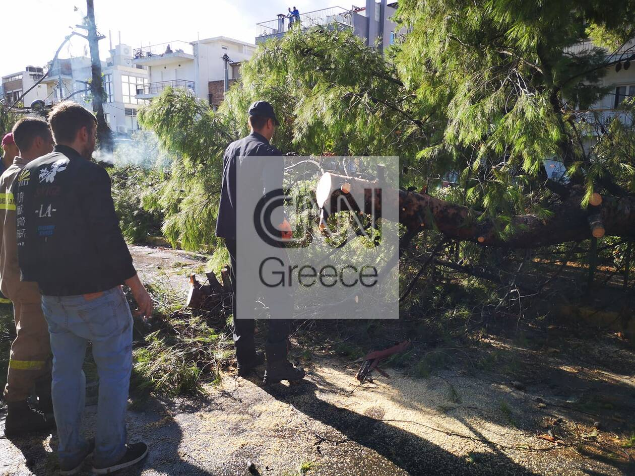 https://cdn.cnngreece.gr/media/news/2020/10/13/238222/photos/snapshot/121618386_335822897492914_5294282274757684906_n.jpg
