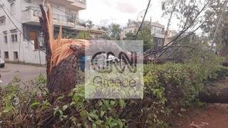 Κακοκαιρία: Από ανεμοστρόβιλο το «χτύπημα» στο Νέο Ηράκλειο