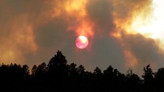 Νέο Μεξικό: Στάχτη 10.000 εκτάρια δάσους λόγω της πυρκαγιάς «Λούνα»