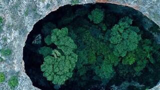 Η εντυπωσιακή «Μαύρη Τρύπα» της Μάνης έχει στο εσωτερικό της ένα μικρό δάσος