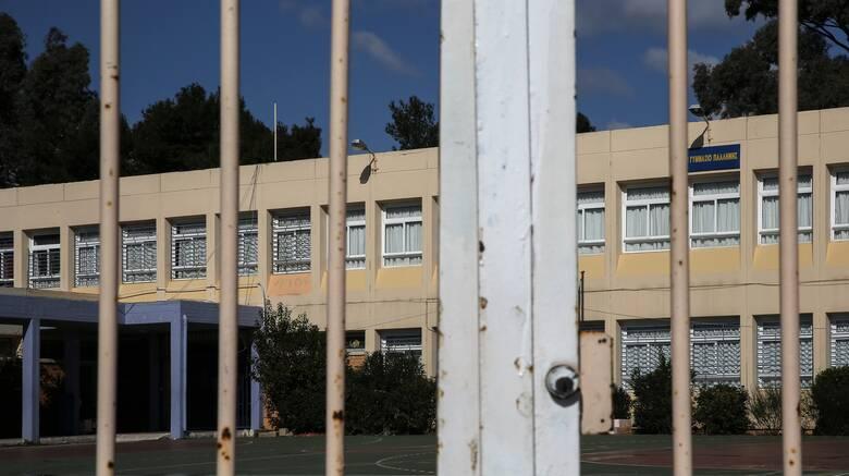 Κορωνοϊός - Παπαευαγγέλου: Μονόδρομος το κλείσιμο όλων των σχολείων