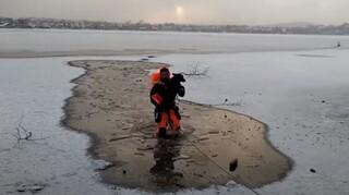 Ρωσία: Η ηρωική διάσωση ενός σκύλου που παγιδεύτηκε σε παγωμένη λίμνη