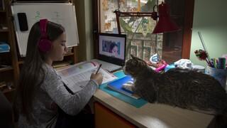 Τηλεκπαίδευση: Έγινε μάθημα 30 έως 60 λεπτά, λέει η Διδασκαλική Ομοσπονδία